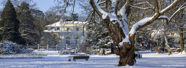 bonn-godesberg-stadtpark-im-winter-3_web